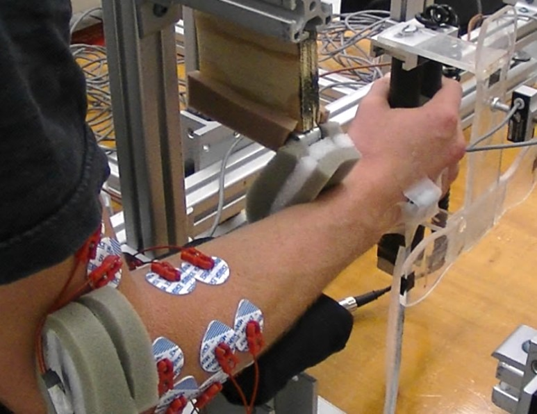Evaluating Wrist Stability During Mechanical Perturbation