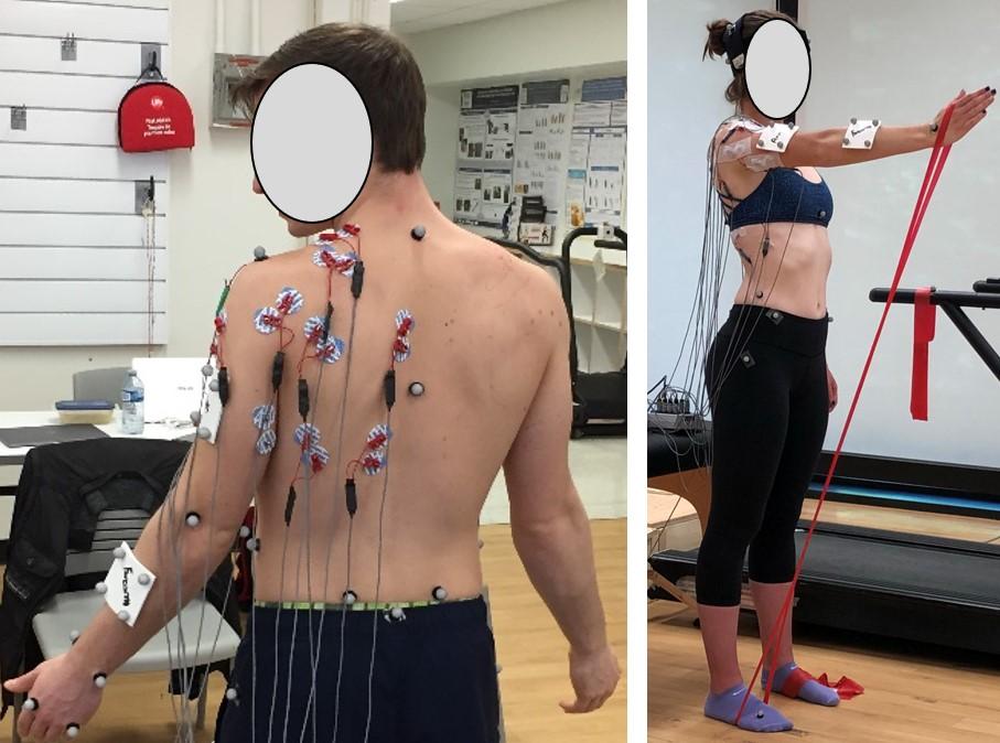 Shoulder rehabilitation